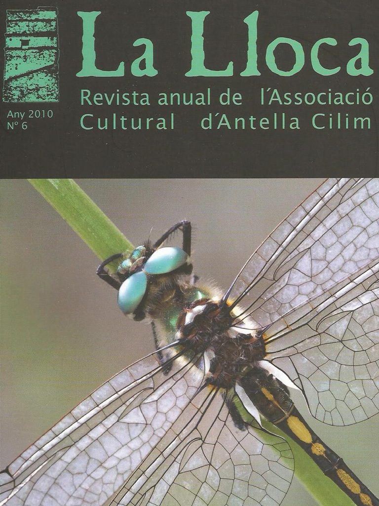 CILIM - Revista La LLoca num 6 any 2010